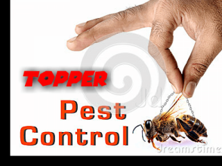 Best Pest Control Services - Topper Pest