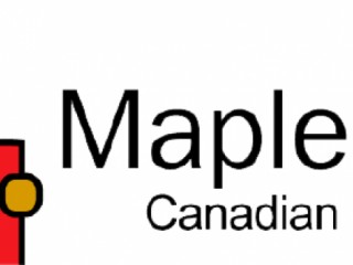 Maple Bear - Day Care & Creche Service Provider