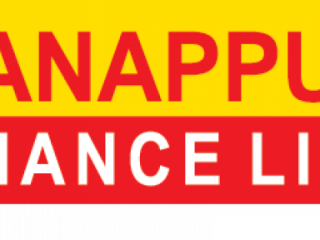 Manppuram Finance Limited - Financial Service
