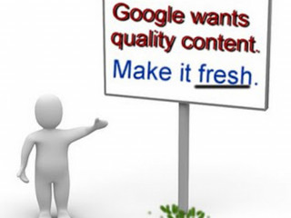 Best Content writing service provider - content vertex