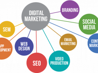 Digital Marketing Services - TECHMAGNATE