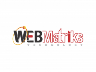 Digital Marketing Service Agency | WEB Matriks Technology