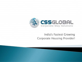CSS Global - Business Development Executive
