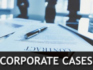 Legal Consultants for Corporate Cases
