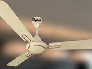Ceiling fan manufacturer - Rajdoot Fans