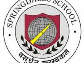 Best Private Schools in Dhaula Kuan | Springdales school