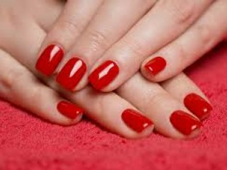 Nail polish supplier - shree products