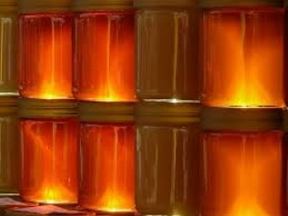 Organic Honey and licthi honey manufacturer